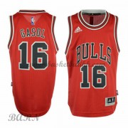 Barn Basketball Drakter Chicago Bulls 2015-16 Pau Gasol 16# Road..