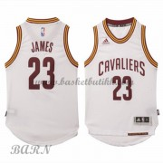 Cleveland Cavaliers Barn 2015-16 LeBron James 23# Home NBA Basketball Drakter..
