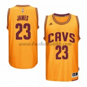 Cleveland Cavaliers 2015-16 LeBron James 23# Gold Alternate NBA Basketball Drakter