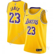 Barn Basketball Drakter Los Angeles Lakers 2019-20 LeBron James 23# Gull Icon Edition Swingman Drakt..