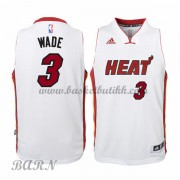 Miami Heat Barn 2015-16 Dwyane Wade 3# Home NBA Basketball Drakter..