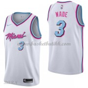Barn Basketball Drakter Miami Heat 2018 Dwyane Wade 3# City Edition Swingman..