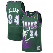 Milwaukee Bucks Mens 1996-97 Ray Allen 34# Green Hardwood Classics..