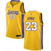 Barn Basketball Drakter Los Angeles Lakers 2018 LeBron James 23# Icon Edition Swingman..